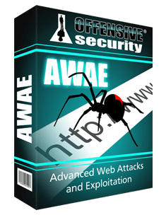 Advanced Web Attacks and Exploitation