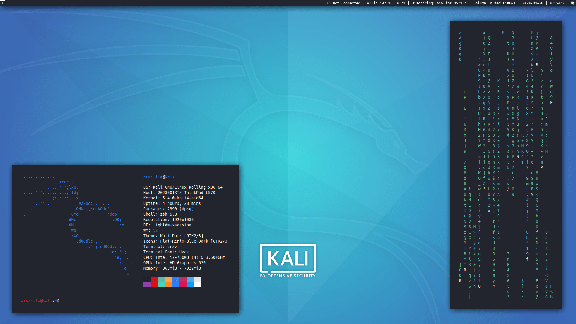 Kali-i3-gaps - An old but an accurate image of the end product